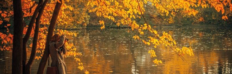 fall-water