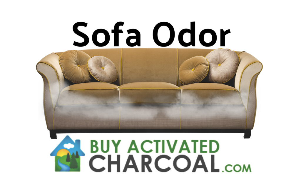 sofa 2 1024x615 - Q & A: On Removing Odors from Sofa