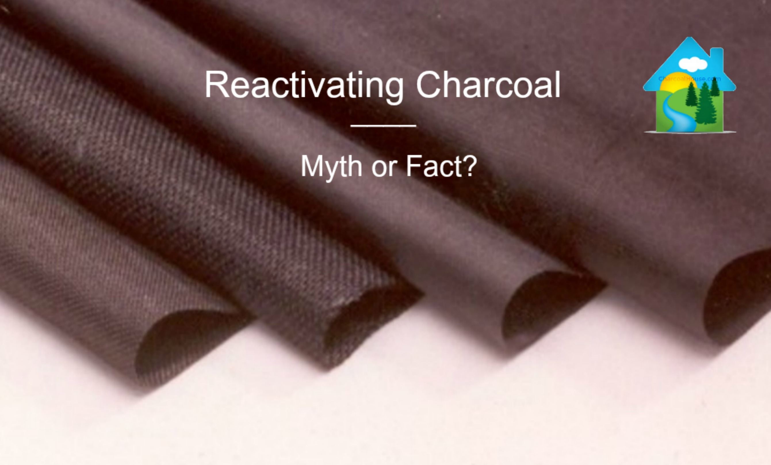 reactivating charcoal myth or fact header - Do you Recommend Reactivating the Charcoal?