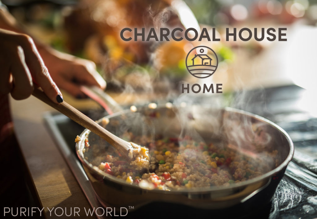 Charcoal House Home 1024x707 - Activated Charcoal for the Home